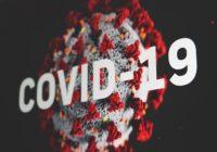 5 Fakta Coronavirus - COVID-19 | arum.me